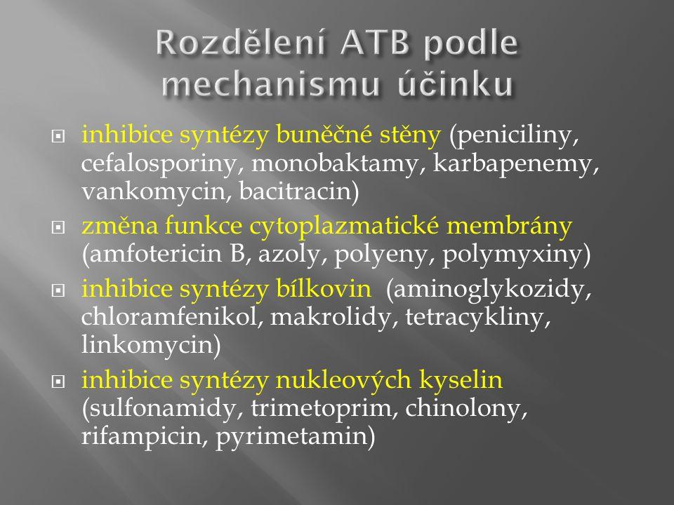  u nekomplikovaných stavů bez toxického stavu: ATB per os dostatečně dlouho dobu (zpravidla 10 - 14 dnů)  infekce se závažným průběhem vyžaduje vždy parenterální zahájení léčby za hospitalizace a dle vývoje klinického stavu lze pokračovat perorální formou ATB