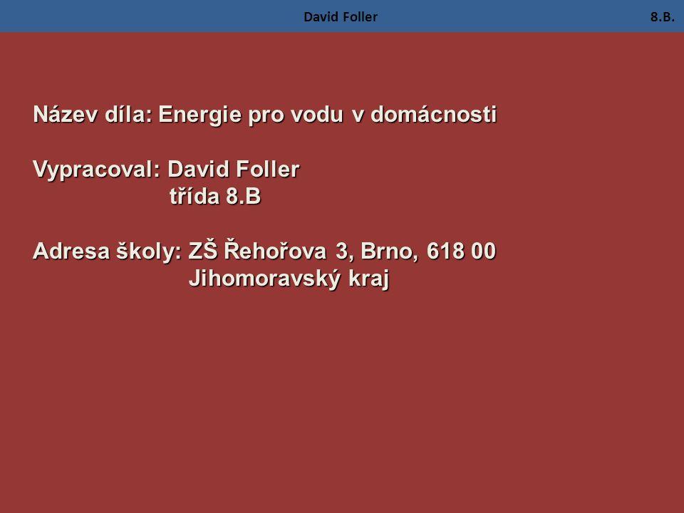 David Foller 8.B.