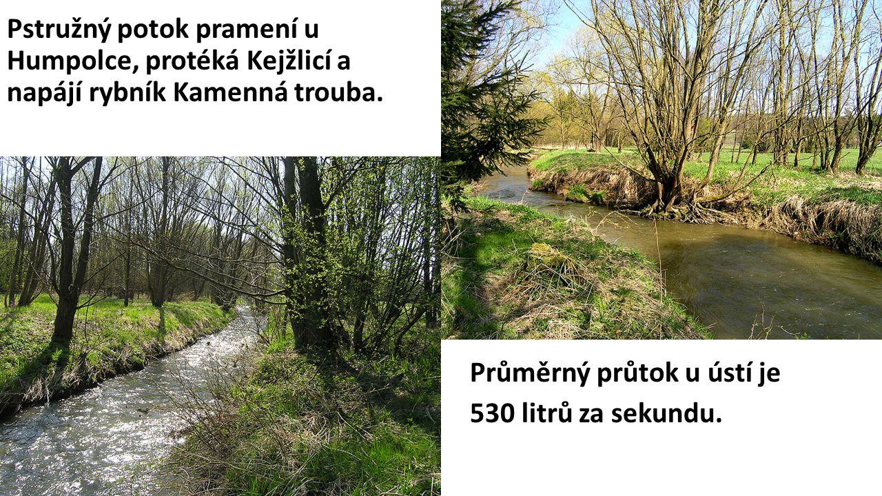 Pstružný potok pramení u Humpolce, protéká Kejžlicí a napájí rybník Kamenná trouba.