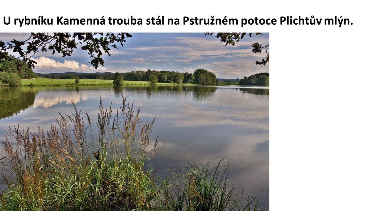 U rybníku Kamenná trouba stál na Pstružném potoce Plichtův mlýn.