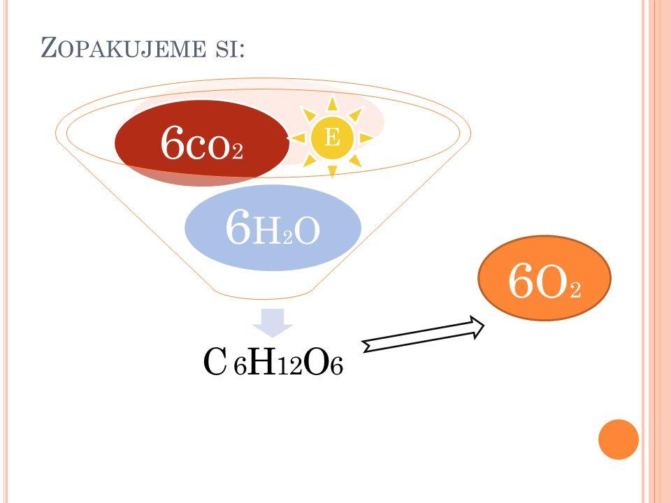 DEFINICE Fotosyntéza je přeměna neústrojných látek na látky ústrojné za přítomnosti slunečné energie. 6 CO 2 + 6 H 2 O + E  C 6 H 12 O 6 + 6 0 2