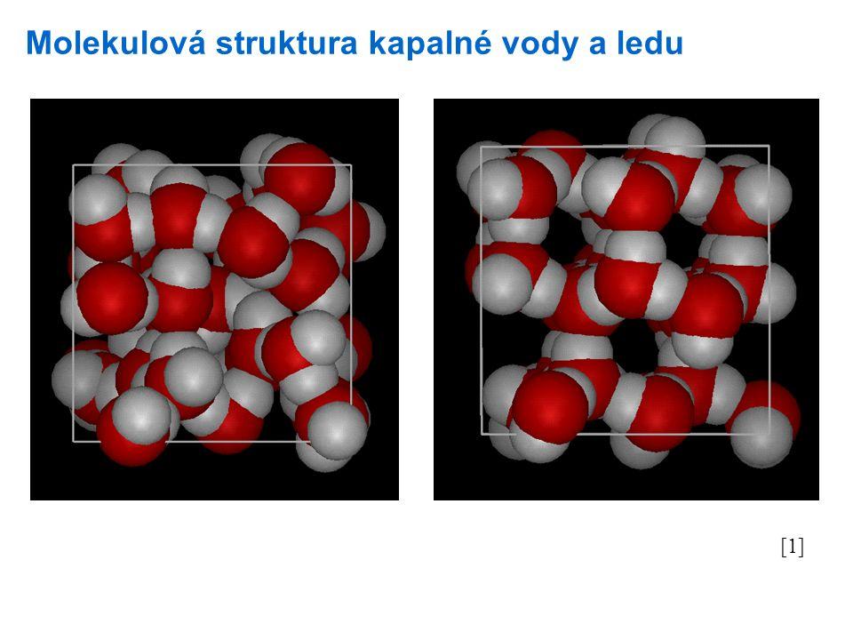 Molekulová struktura kapalné vody a ledu [1]
