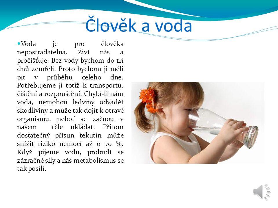 Průměrná spotřeba vody v ČR Pitná voda se získává úpravou surové vody.
