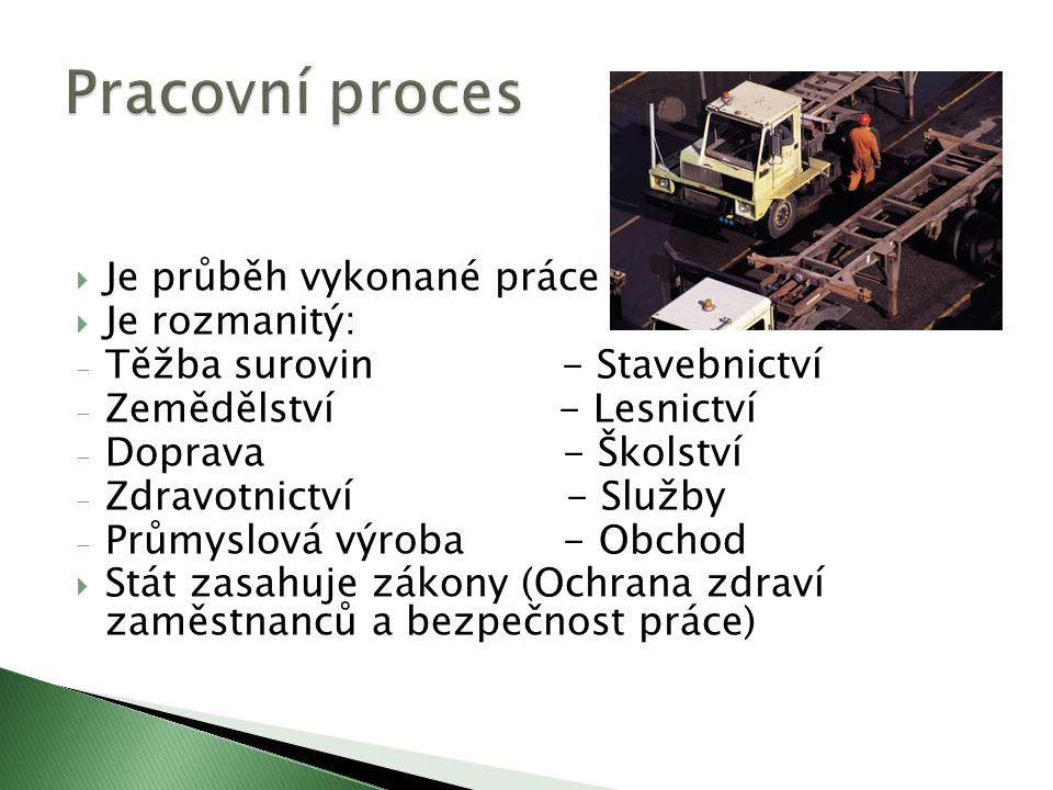  Je průběh vykonané práce  Je rozmanitý: - Těžba surovin - Stavebnictví - Zemědělství - Lesnictví - Doprava - Školství - Zdravotnictví - Služby - Průmyslová výroba - Obchod  Stát zasahuje zákony (Ochrana zdraví zaměstnanců a bezpečnost práce)