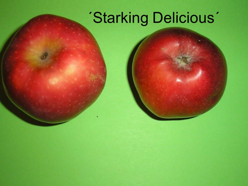 ´Starking Delicious´