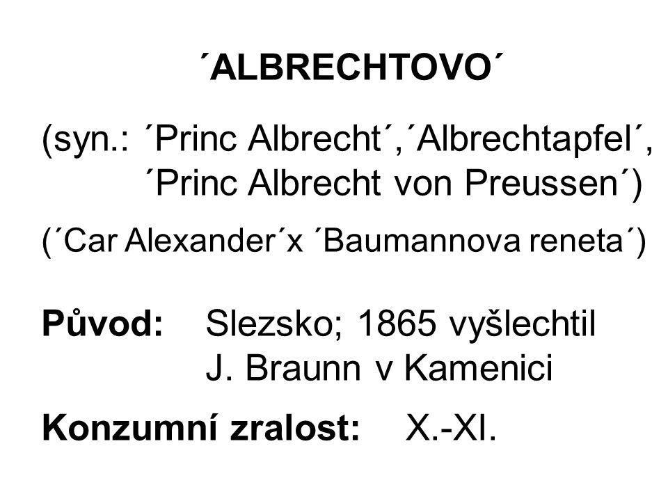 ´ALBRECHTOVO´ (syn.: ´Princ Albrecht´,´Albrechtapfel´, ´Princ Albrecht von Preussen´) (´Car Alexander´x ´Baumannova reneta´) Původ: Slezsko; 1865 vyšlechtil J.