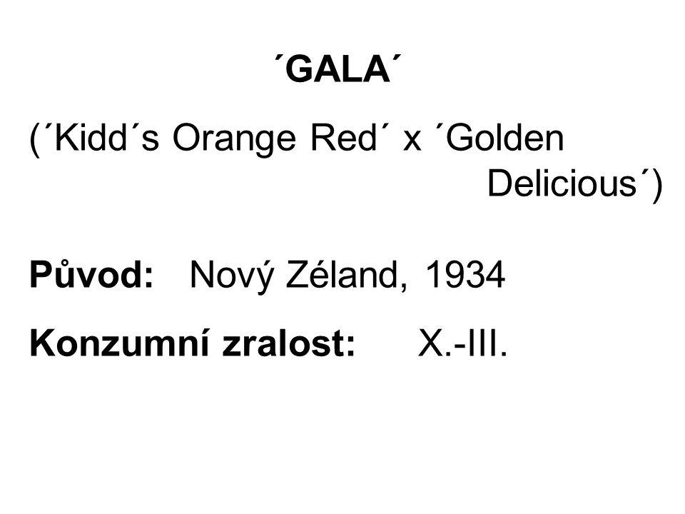 ´GALA´ (´Kidd´s Orange Red´ x ´Golden Delicious´) Původ: Nový Zéland, 1934 Konzumní zralost:X.-III.