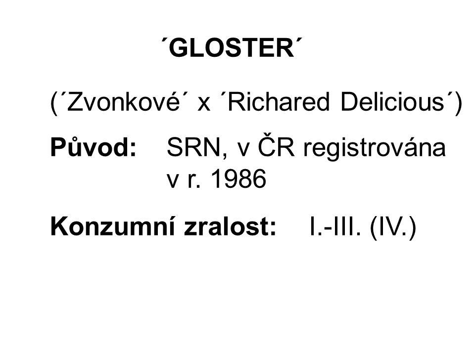 ´GLOSTER´ (´Zvonkové´ x ´Richared Delicious´) Původ: SRN, v ČR registrována v r.