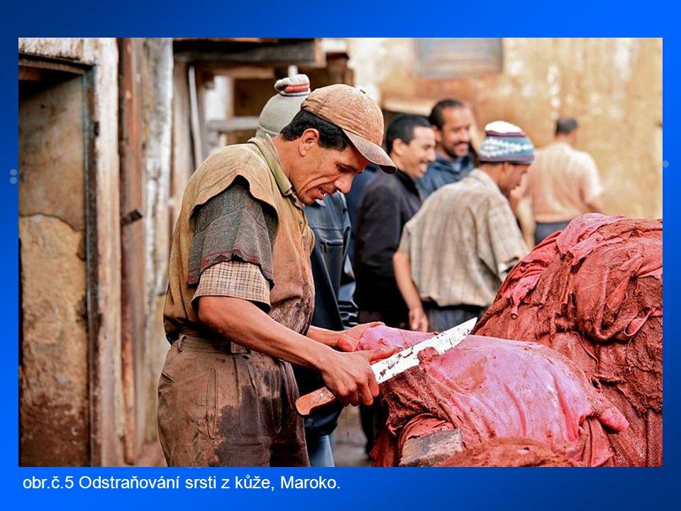 obr.č.5 Odstraňování srsti z kůže, Maroko.