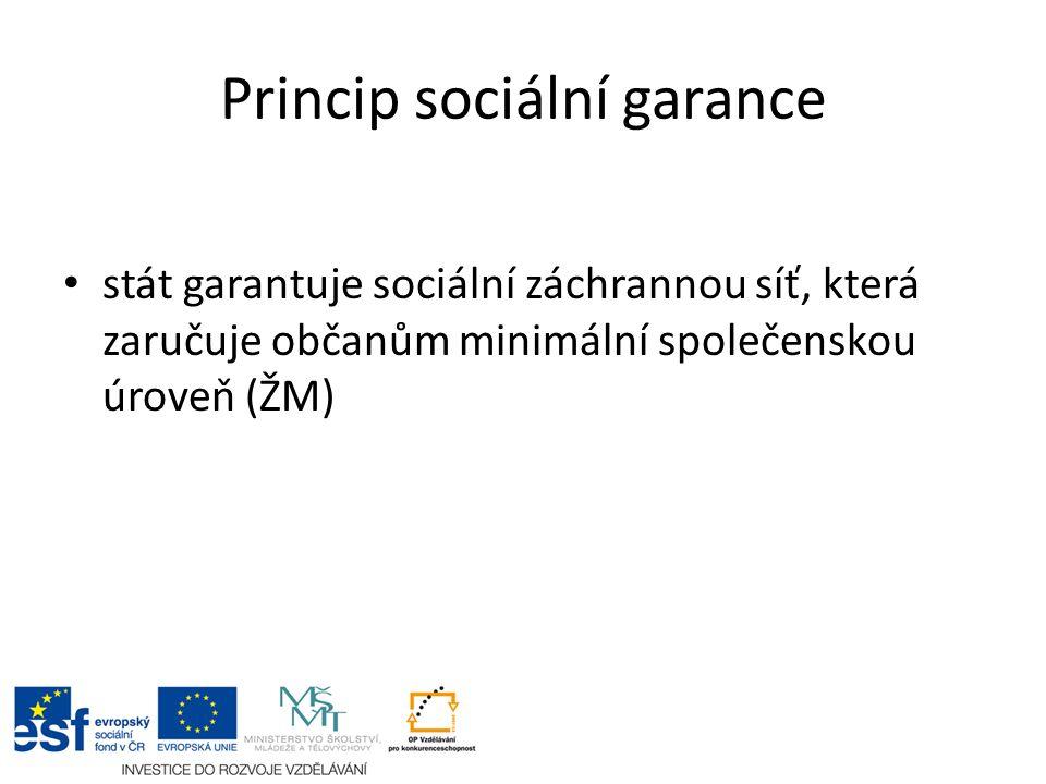 Princip sociální garance stát garantuje sociální záchrannou síť, která zaručuje občanům minimální společenskou úroveň (ŽM)