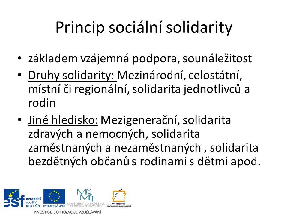 Princip sociální solidarity základem vzájemná podpora, sounáležitost Druhy solidarity: Mezinárodní, celostátní, místní či regionální, solidarita jednotlivců a rodin Jiné hledisko: Mezigenerační, solidarita zdravých a nemocných, solidarita zaměstnaných a nezaměstnaných, solidarita bezdětných občanů s rodinami s dětmi apod.