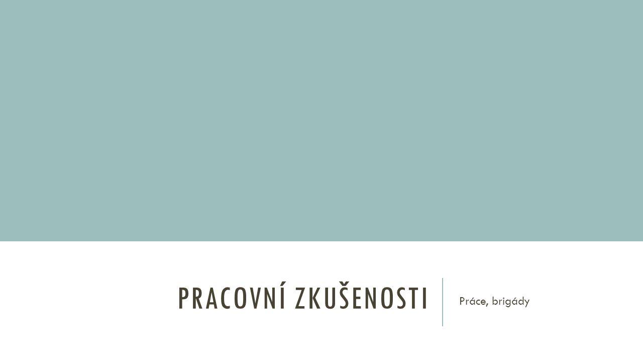 PRACOVNÍ ZKUŠENOSTI 07/2015 – 08/2015 Ing.