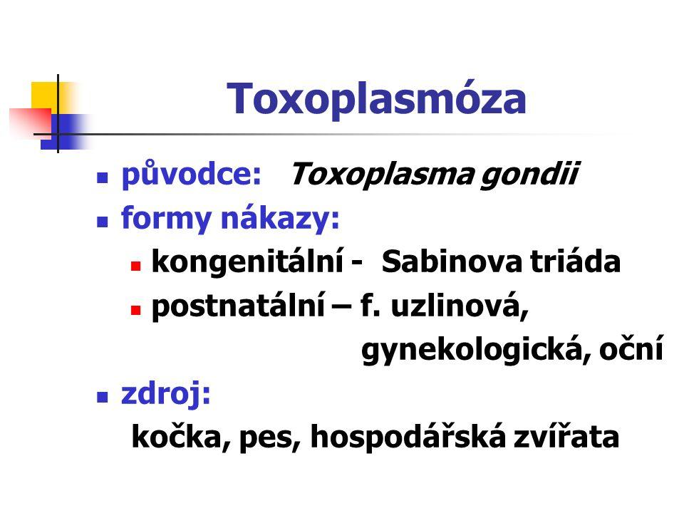 Toxoplasmóza původce: Toxoplasma gondii formy nákazy: kongenitální - Sabinova triáda postnatální – f. uzlinová, gynekologická, oční zdroj: kočka, pes,