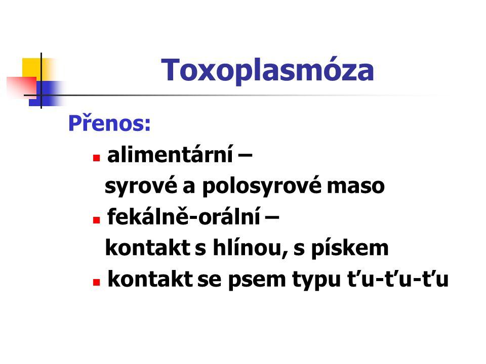 Toxoplasmóza Přenos: alimentární – syrové a polosyrové maso fekálně-orální – kontakt s hlínou, s pískem kontakt se psem typu ťu-ťu-ťu