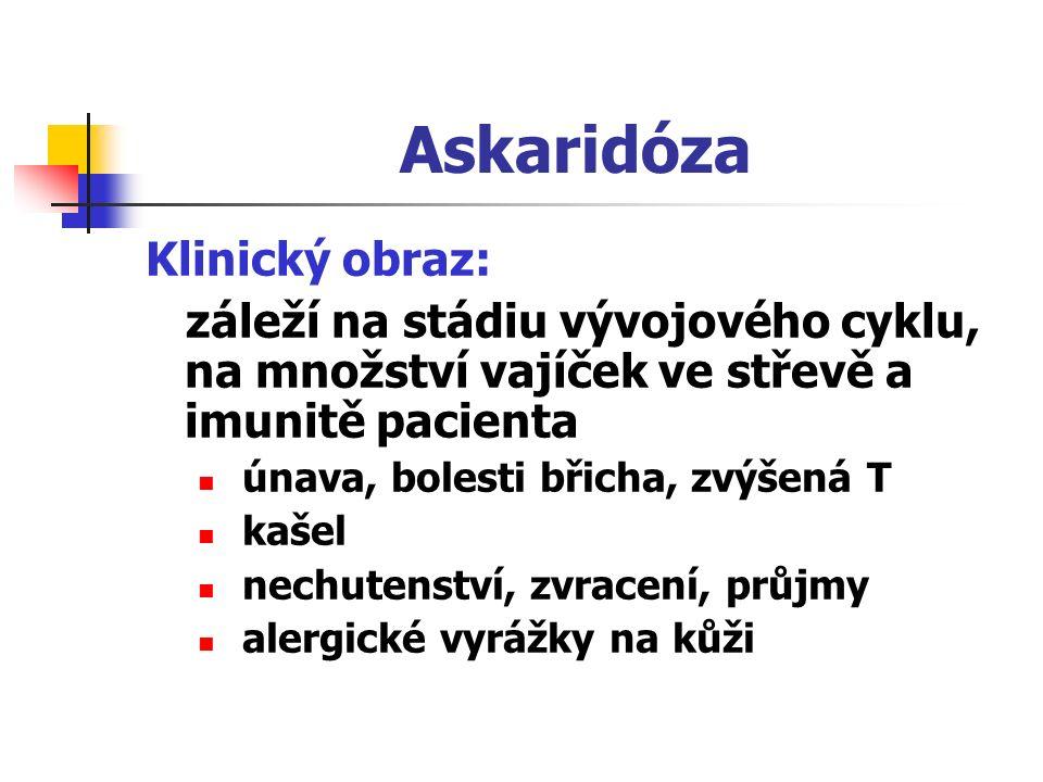 Askaridóza Klinický obraz: záleží na stádiu vývojového cyklu, na množství vajíček ve střevě a imunitě pacienta únava, bolesti břicha, zvýšená T kašel