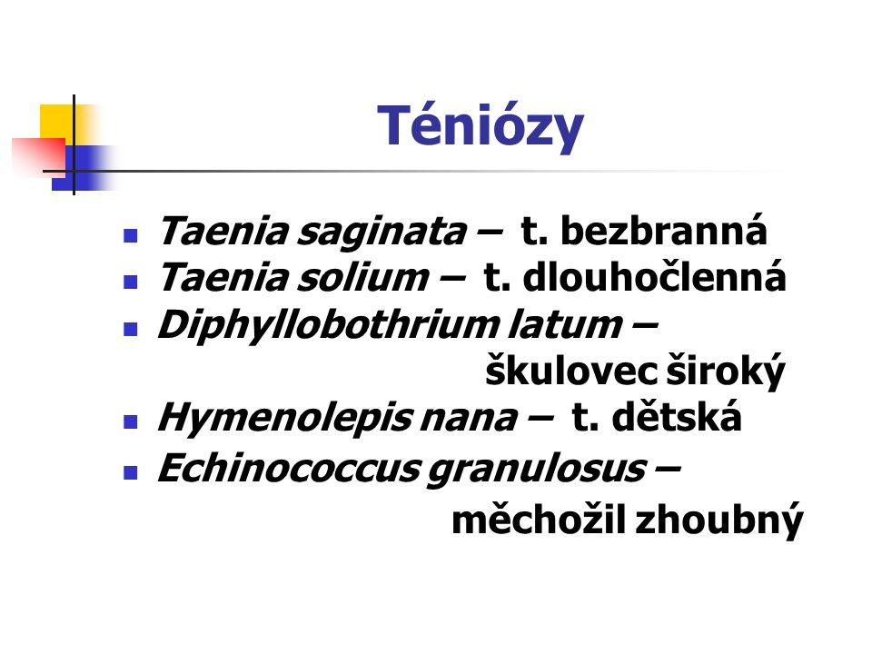 Téniózy Taenia saginata – t. bezbranná Taenia solium – t. dlouhočlenná Diphyllobothrium latum – škulovec široký Hymenolepis nana – t. dětská Echinococ
