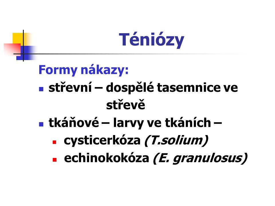 Formy nákazy: střevní – dospělé tasemnice ve střevě tkáňové – larvy ve tkáních – cysticerkóza (T.solium) echinokokóza (E. granulosus)
