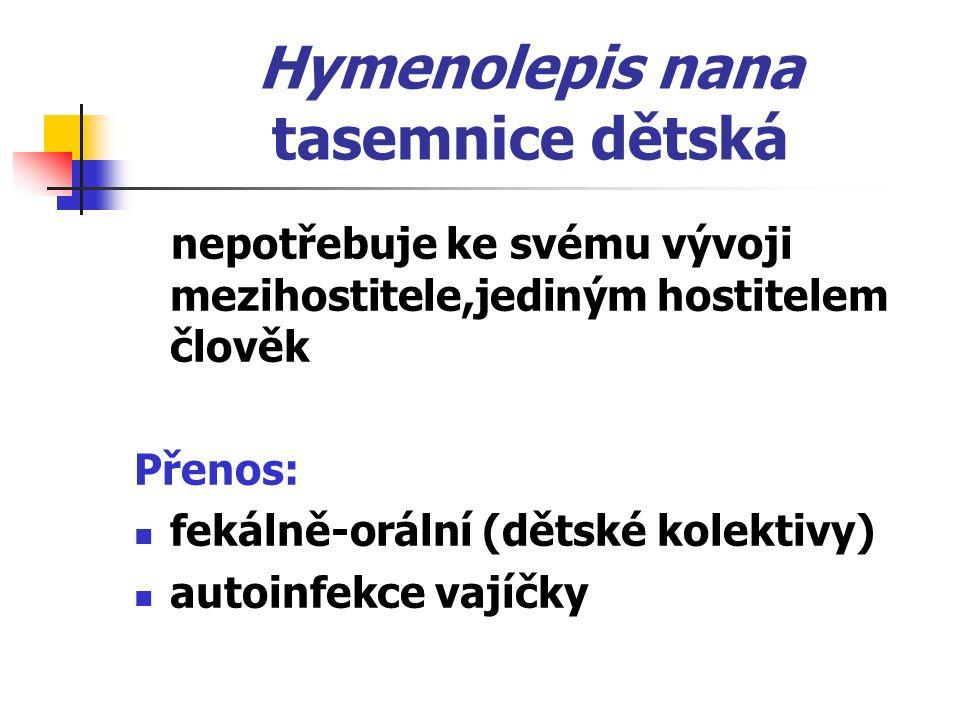 Hymenolepis nana tasemnice dětská nepotřebuje ke svému vývoji mezihostitele,jediným hostitelem člověk Přenos: fekálně-orální (dětské kolektivy) autoinfekce vajíčky