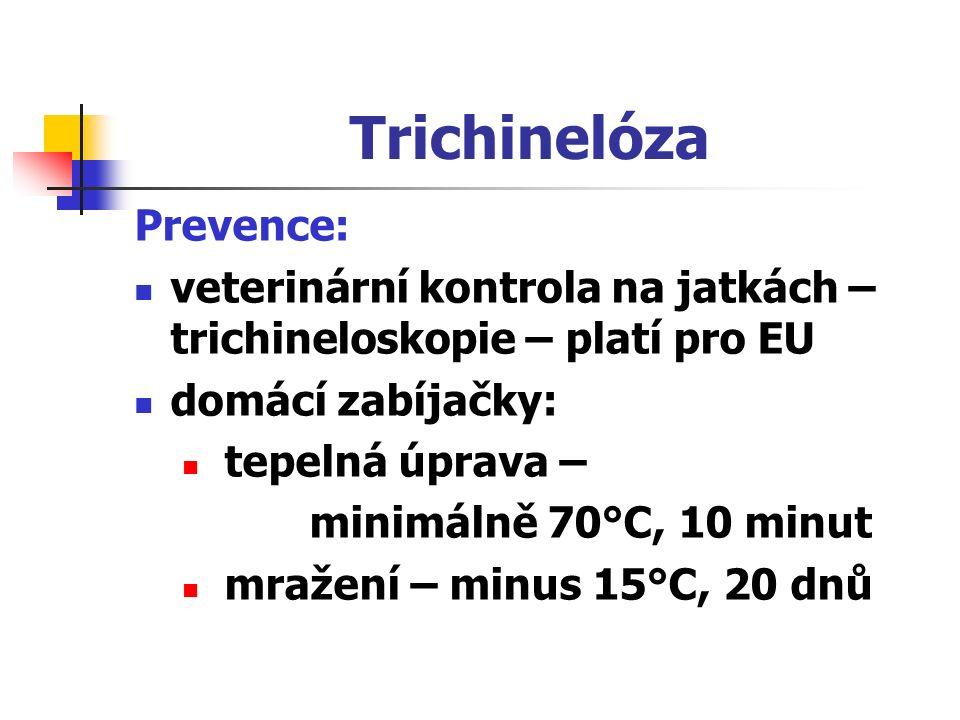 Trichinelóza Prevence: veterinární kontrola na jatkách – trichineloskopie – platí pro EU domácí zabíjačky: tepelná úprava – minimálně 70°C, 10 minut mražení – minus 15°C, 20 dnů