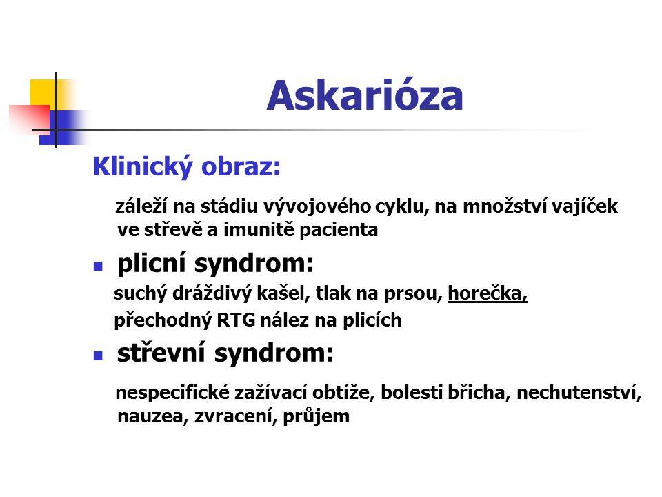 Askarióza Klinický obraz: záleží na stádiu vývojového cyklu, na množství vajíček ve střevě a imunitě pacienta plicní syndrom: suchý dráždivý kašel, tlak na prsou, horečka, přechodný RTG nález na plicích střevní syndrom: nespecifické zažívací obtíže, bolesti břicha, nechutenství, nauzea, zvracení, průjem