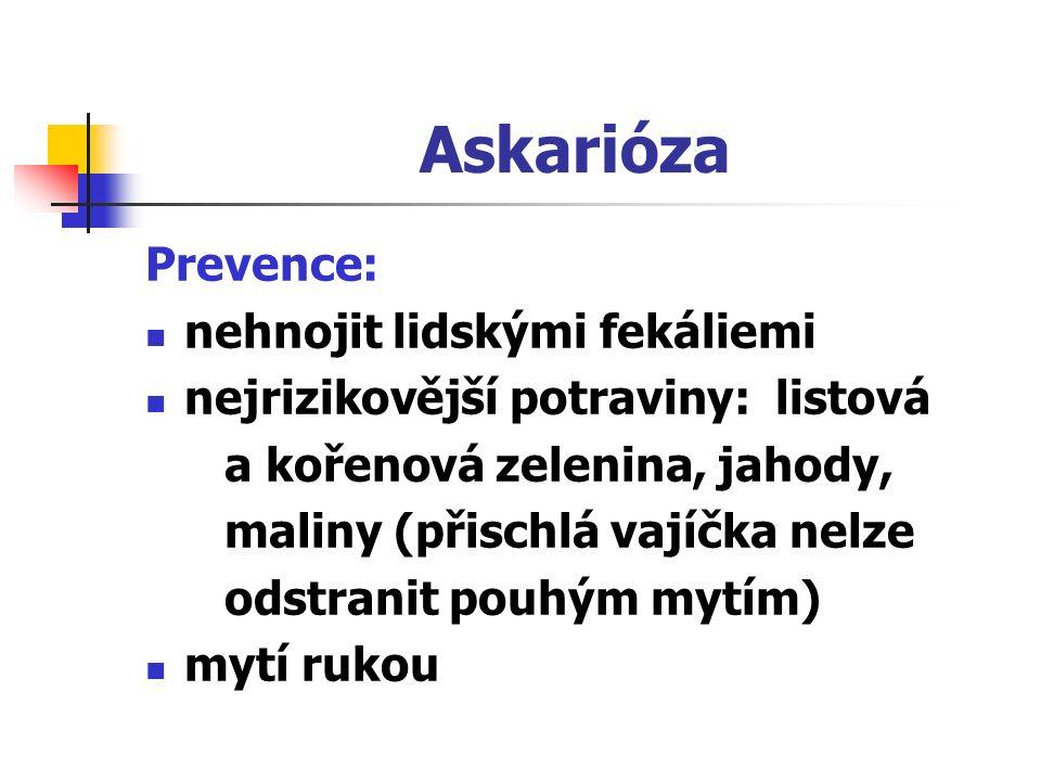 Askarióza Prevence: nehnojit lidskými fekáliemi nejrizikovější potraviny: listová a kořenová zelenina, jahody, maliny (přischlá vajíčka nelze odstranit pouhým mytím) mytí rukou