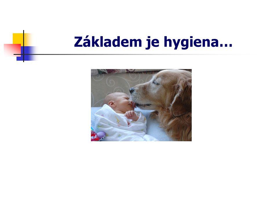 Základem je hygiena…