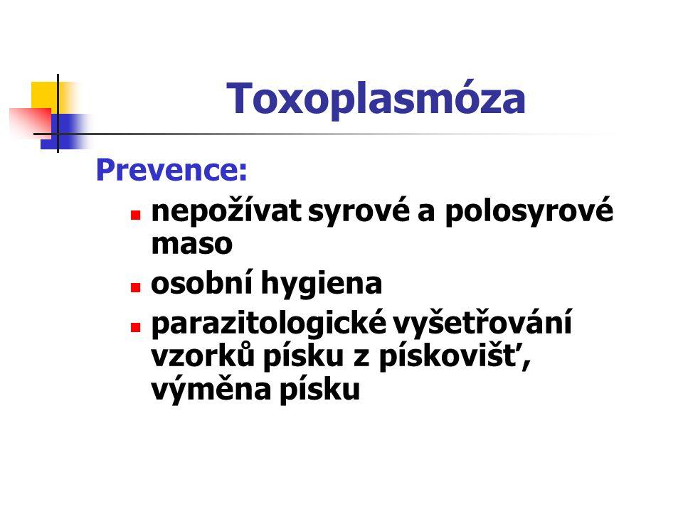 Toxoplasmóza Prevence: nepožívat syrové a polosyrové maso osobní hygiena parazitologické vyšetřování vzorků písku z pískovišť, výměna písku