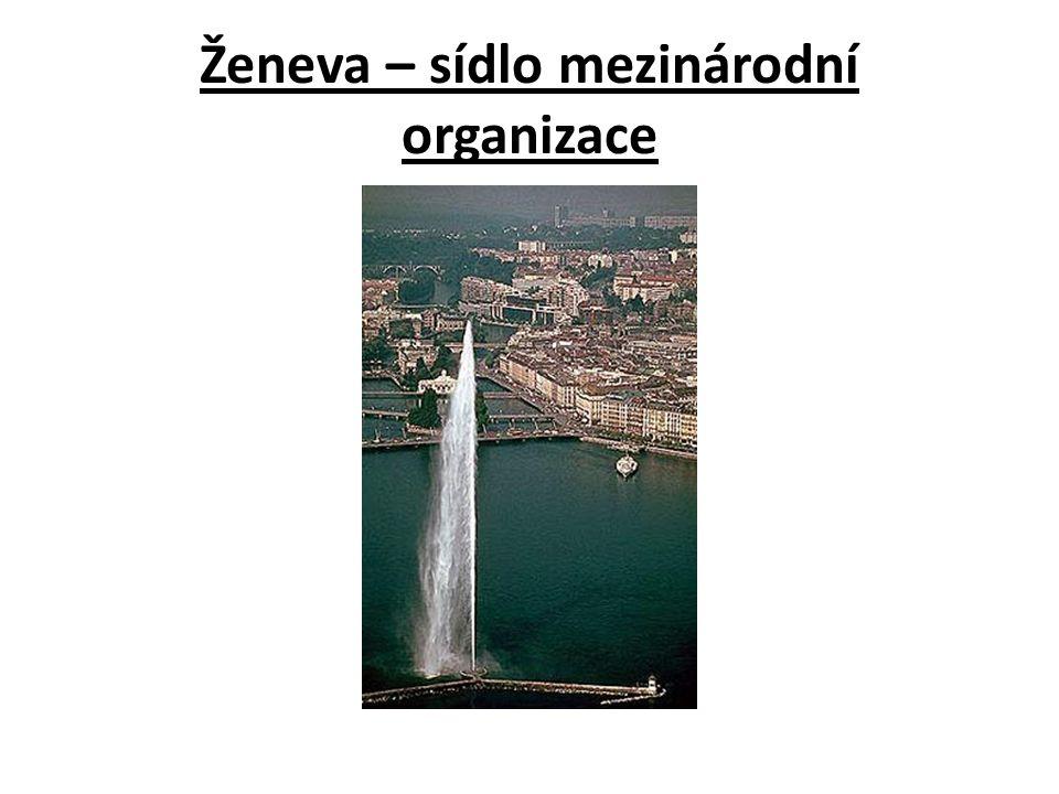 Ženeva – sídlo mezinárodní organizace