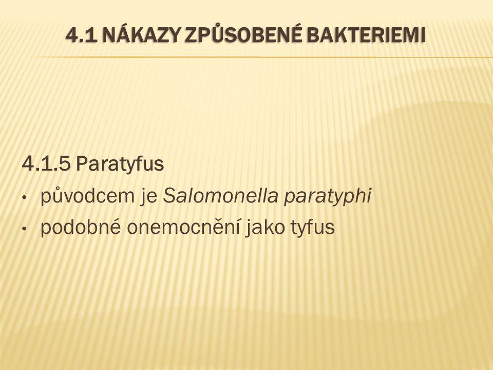 4.1 NÁKAZY ZPŮSOBENÉ BAKTERIEMI 4.1.5 Paratyfus původcem je Salomonella paratyphi podobné onemocnění jako tyfus
