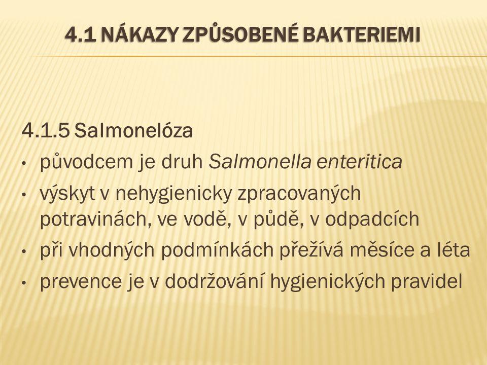 4.1 NÁKAZY ZPŮSOBENÉ BAKTERIEMI 4.1.5 Salmonelóza původcem je druh Salmonella enteritica výskyt v nehygienicky zpracovaných potravinách, ve vodě, v půdě, v odpadcích při vhodných podmínkách přežívá měsíce a léta prevence je v dodržování hygienických pravidel