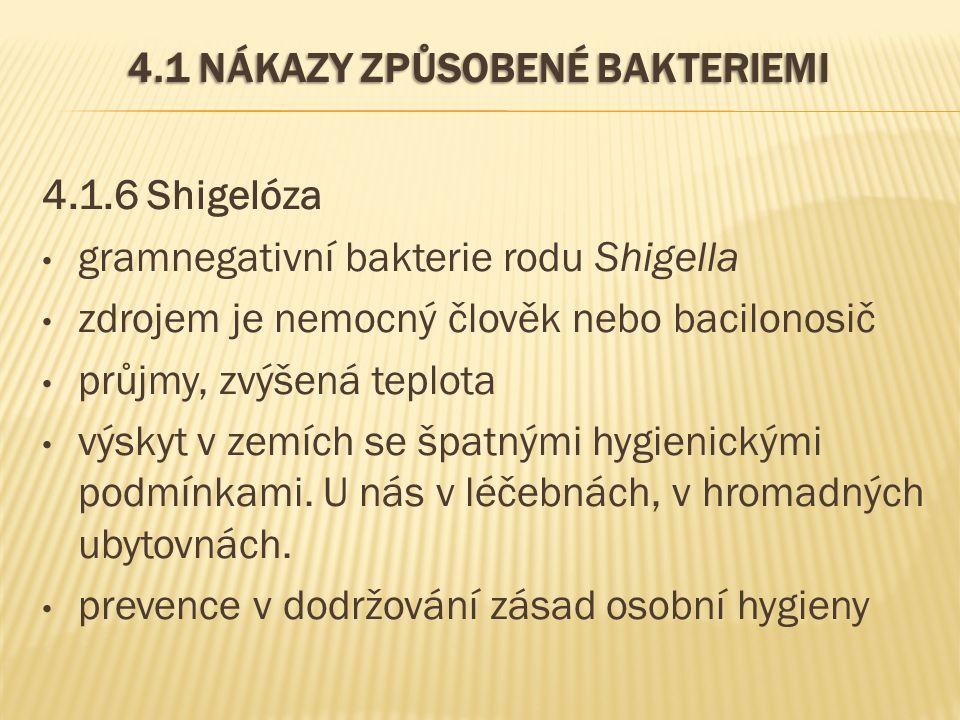 4.1 NÁKAZY ZPŮSOBENÉ BAKTERIEMI 4.1.6 Shigelóza gramnegativní bakterie rodu Shigella zdrojem je nemocný člověk nebo bacilonosič průjmy, zvýšená teplota výskyt v zemích se špatnými hygienickými podmínkami.