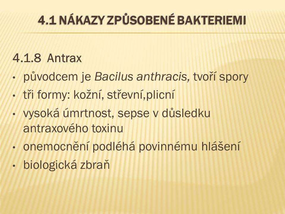 4.1 NÁKAZY ZPŮSOBENÉ BAKTERIEMI 4.1.8 Antrax původcem je Bacilus anthracis, tvoří spory tři formy: kožní, střevní,plicní vysoká úmrtnost, sepse v důsledku antraxového toxinu onemocnění podléhá povinnému hlášení biologická zbraň