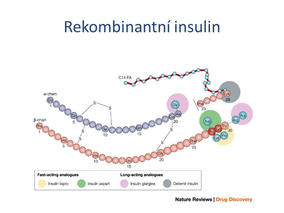 Rekombinantní insulin