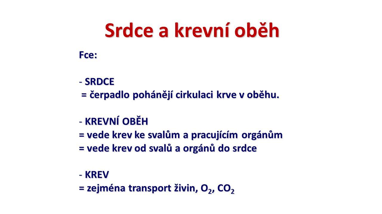 Srdce a krevní oběh Fce: - SRDCE = čerpadlo pohánějí cirkulaci krve v oběhu. = čerpadlo pohánějí cirkulaci krve v oběhu. - KREVNÍ OBĚH = vede krev ke
