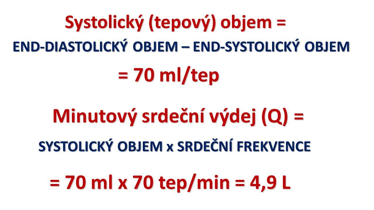 Systolický (tepový) objem = END-DIASTOLICKÝ OBJEM – END-SYSTOLICKÝ OBJEM = 70 ml/tep Minutový srdeční výdej (Q) = SYSTOLICKÝ OBJEM x SRDEČNÍ FREKVENCE