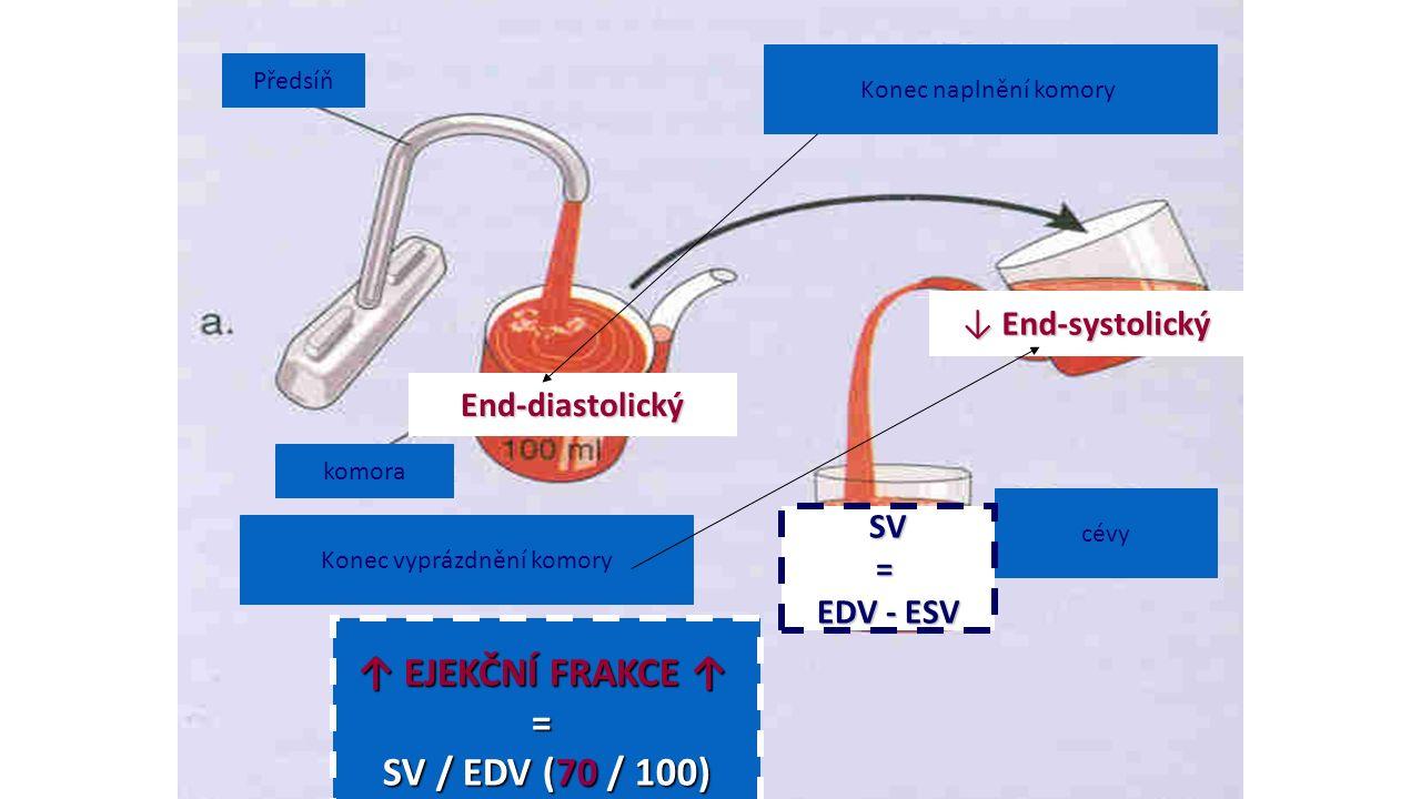 Předsíň komora Konec naplnění komory cévy Konec vyprázdnění komory ↑ EJEKČNÍ FRAKCE ↑ = SV / EDV (70 / 100) End-diastolický ↓ End-systolický SV= EDV - ESV