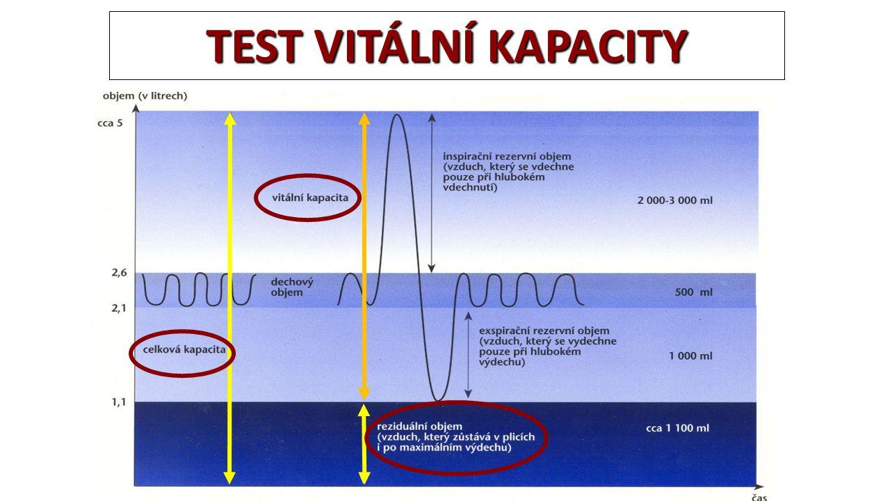 DÝCHACÍ SYSTÉM ZA BĚŽNÝCH PODMÍNEK Za klidových podmínek DV = 0,5 l, DF = 10 - 15/min Při maximální intenzitě vitální kapacita VC = 5 l VC u elitních plavců – až 7 l DFmax = 50 - 60/min VENTILACE (V) = DV x DF Za klidových podmínek: 5 - 8 l/min Maximálně: 200 l (při vyšší DF nelze využívat celé vitální kapacity, maximálně 60%)