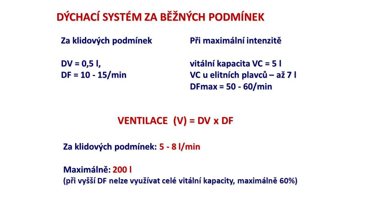 DÝCHACÍ SYSTÉM ZA BĚŽNÝCH PODMÍNEK Za klidových podmínek DV = 0,5 l, DF = 10 - 15/min Při maximální intenzitě vitální kapacita VC = 5 l VC u elitních