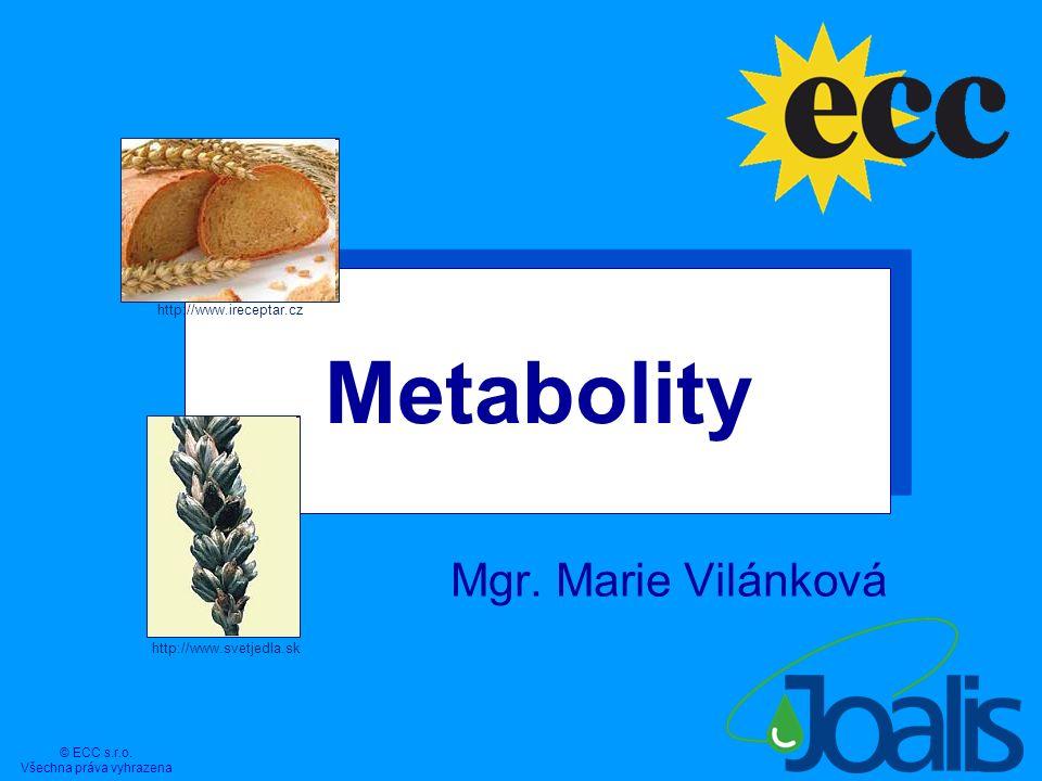 Metabolity Mgr. Marie Vilánková 1 © ECC s.r.o. Všechna práva vyhrazena http://www.svetjedla.sk http://www.ireceptar.cz