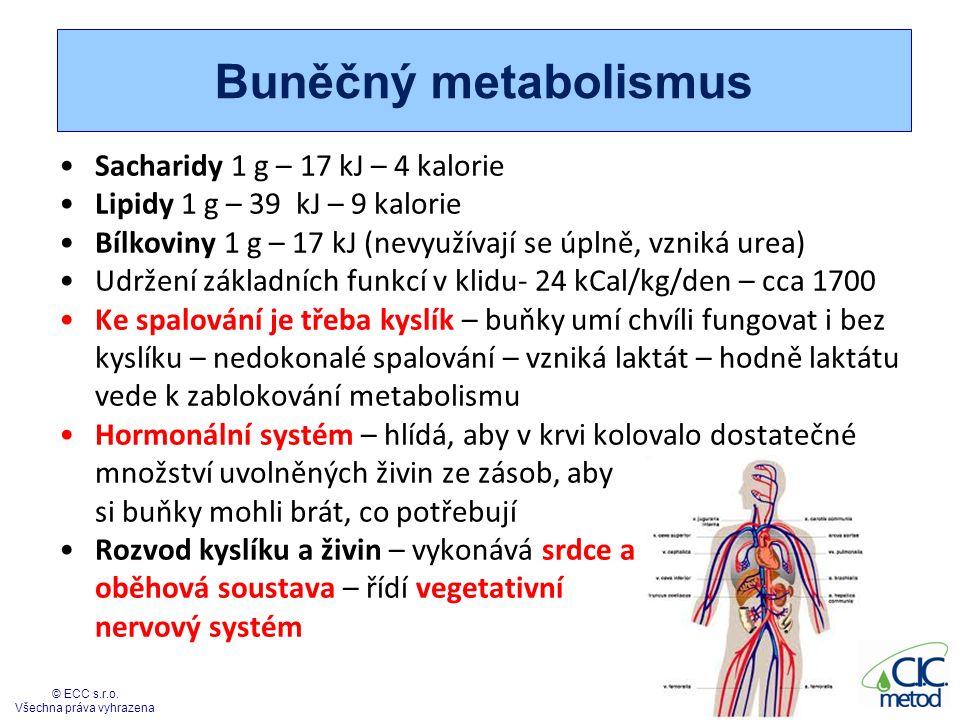 Buněčný metabolismus Sacharidy 1 g – 17 kJ – 4 kalorie Lipidy 1 g – 39 kJ – 9 kalorie Bílkoviny 1 g – 17 kJ (nevyužívají se úplně, vzniká urea) Udržen