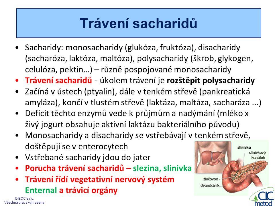 Trávení sacharidů Sacharidy: monosacharidy (glukóza, fruktóza), disacharidy (sacharóza, laktóza, maltóza), polysacharidy (škrob, glykogen, celulóza, p