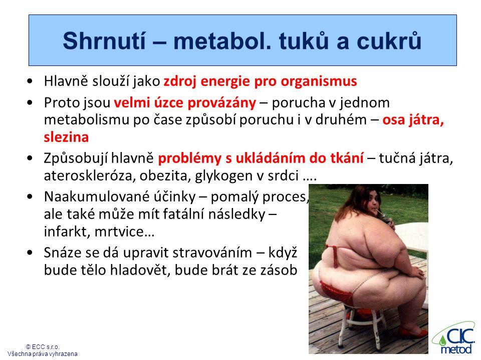 Shrnutí – metabol. tuků a cukrů Hlavně slouží jako zdroj energie pro organismus Proto jsou velmi úzce provázány – porucha v jednom metabolismu po čase