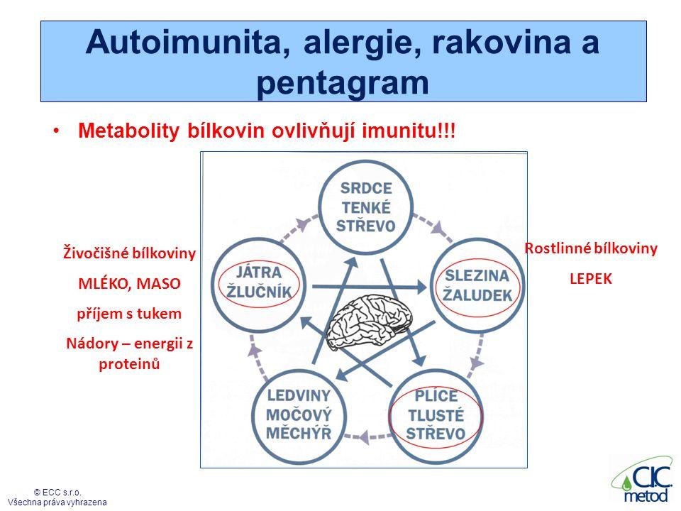 Alergie, autoimunita a pentagram SLEZINA STAROSTLIVOST SRDCE RADOST LEDVINY ÚZKOST JÁTRA AGRESE PLÍCE SMUTEK AUTOIMUNITA HYPERSENZITIVITA rozhodnutí o imunitních reakcích Vystavování proteinů na buňky ALERGIE Protivirová imunita – buněčná, likvidace infikovaných buněk Protibakteriální imunita – protilátková, označení bakterií protilátkami ke zlikvidování Protinádorová imunita – rozhodnutí o zničení vlastních buněk © ECC s.r.o.