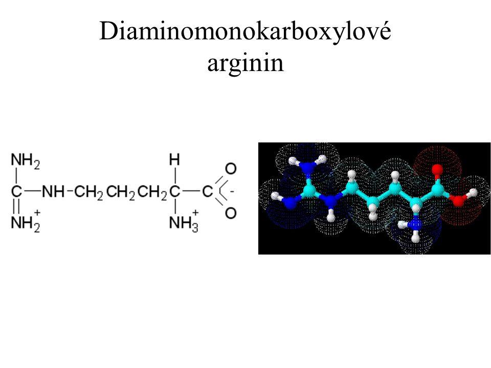 Diaminomonokarboxylové arginin