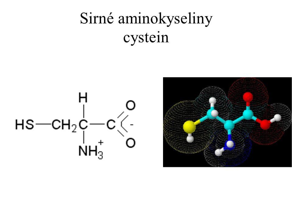 Sirné aminokyseliny cystein