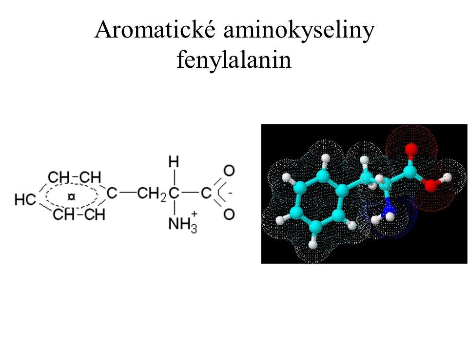 Aromatické aminokyseliny fenylalanin