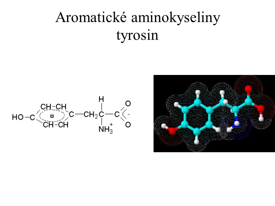 Aromatické aminokyseliny tyrosin