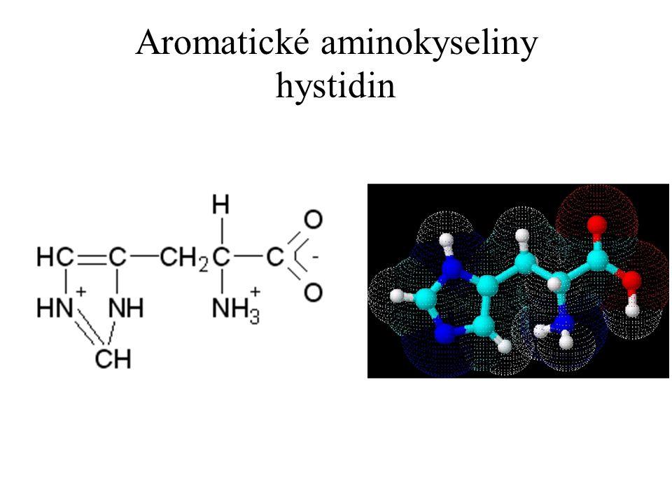 Aromatické aminokyseliny hystidin