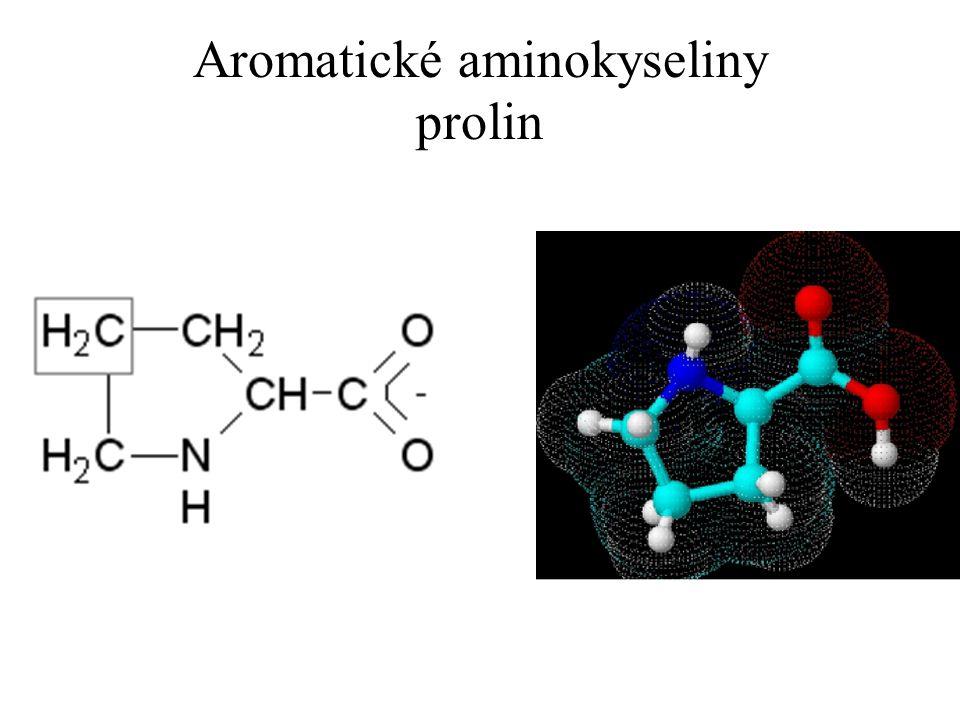 Aromatické aminokyseliny prolin