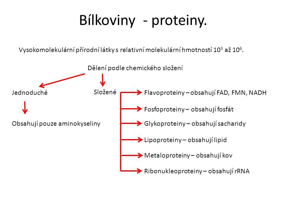 Bílkoviny - proteiny. Vysokomolekulární přírodní látky s relativní molekulární hmotností 10 3 až 10 6. Dělení podle chemického složení Jednoduché Slož
